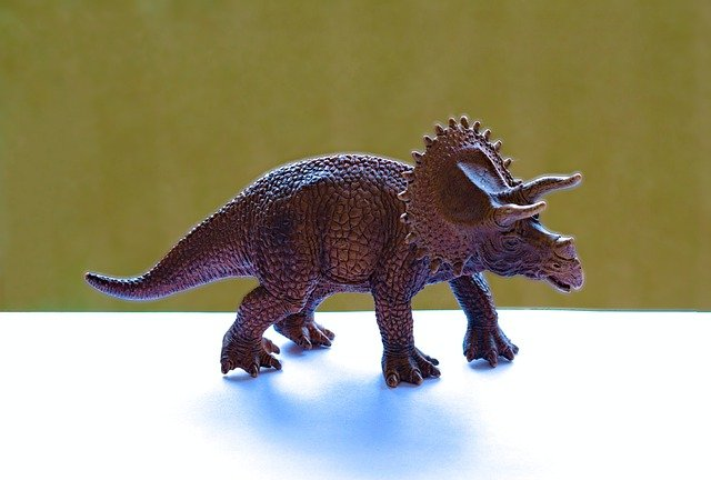 Na obrazku jest dinozaur - triceratops.